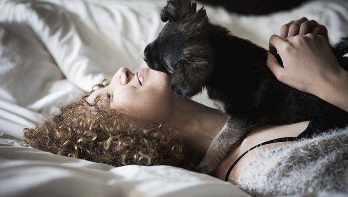 5 Things Only Puppy Parents Know About Getting Ready In The Morning