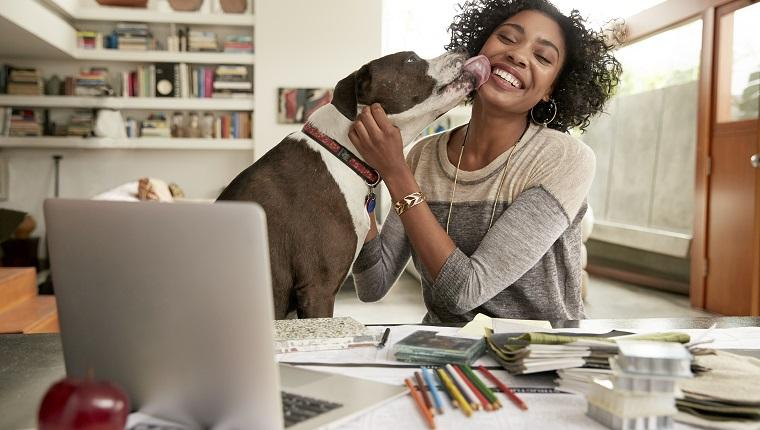 6 Woof-Worthy Ways Dog Lovers Can Save On Amazon Prime Day