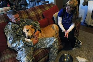 Soldier and his dying dog comfort each other