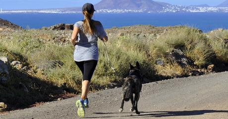 Top 5 tips for running with your dog