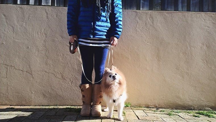 Retractable Leashes: Dangerous And Deadly For Dogs And Humans