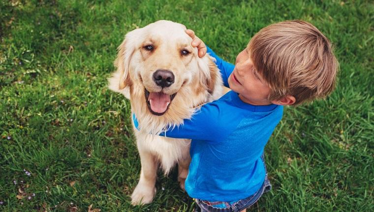 Study Shows Dog Genes Link To Behavior And Personality